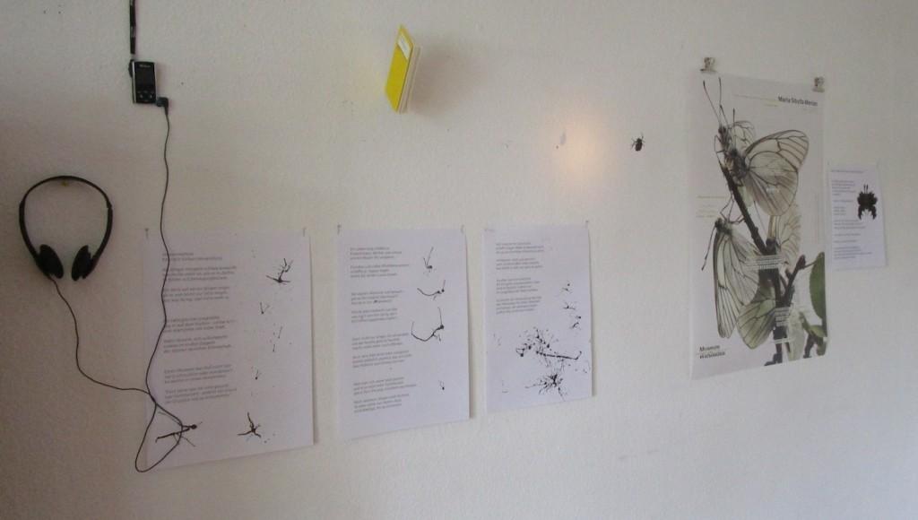 Verwandlung: Originaltext und Paraphrase, Hörbuch, Papierobjekt